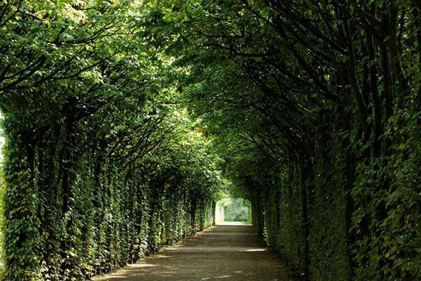 Bayreuth-3352_RET_590x395