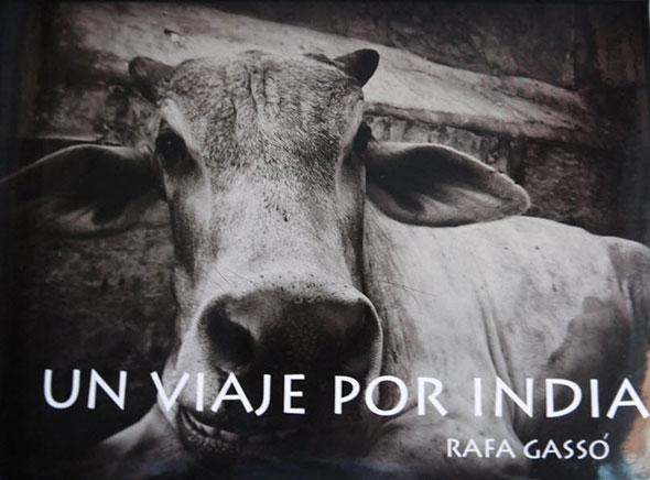 Un viaje por India, un libro de Rafa Gassó