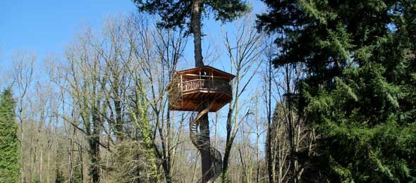 Zuhaitz-etxeak, cabañas en los árboles en Euskadi
