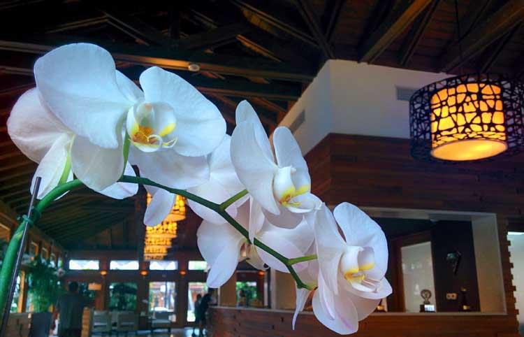 Lobby del Casa de Campo Resort & Villas. Foto © Tu Gran Viaje