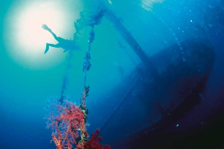 Submarinismo en Aqaba. Novedades de Jordania en Fitur 2017. Tu Gran Viaje