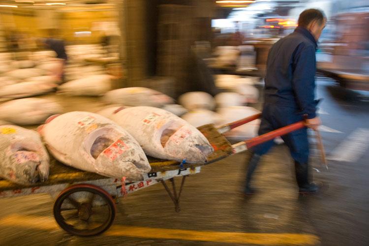 De compras en Tokio con los Xperts de Tu Gran Viaje | Shopping in Tokyo