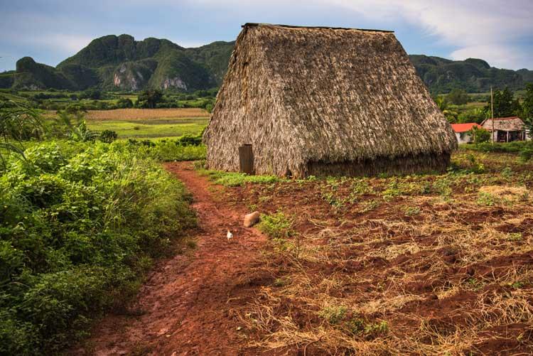 Valle de los ingenios, Cuba. Naturaleza y eco-diversidad en el Caribe | Tu Gran Viaje. Revista de viajes y turismo