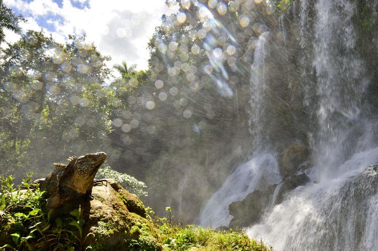 Caribe Eco   Tu Gran Viaje revista de viajes y turismo