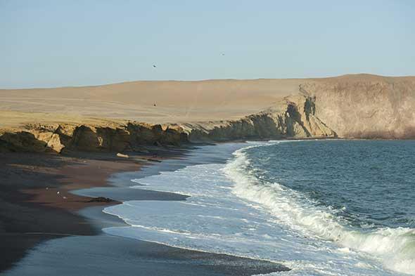 Reserva Nacional de Paracas | Perú Eco | Revista Tu Gran Viaje