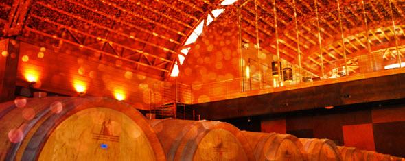 El hotel Pago de Vicario está rodeado por un viñedo de 130 ha