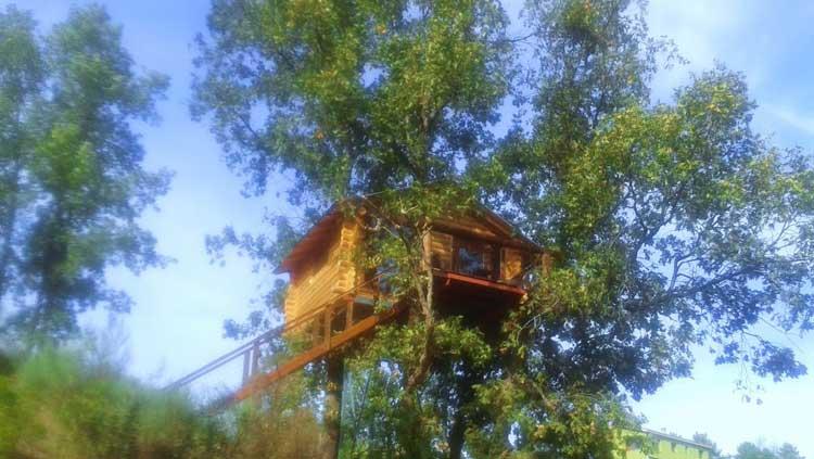 Dormir en los árboles. Villanueva de Gata. Cáceres.