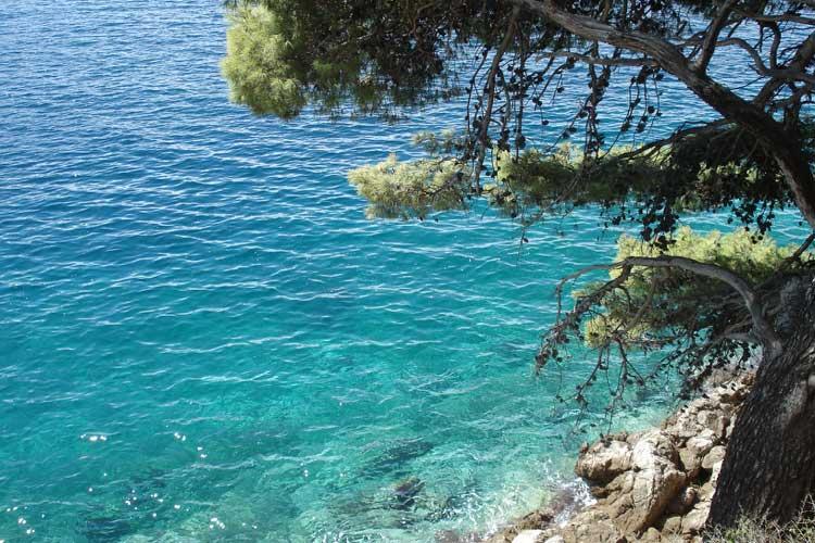 Mediterráneo en Dubrovnik. Foto © Tu Gran Viaje
