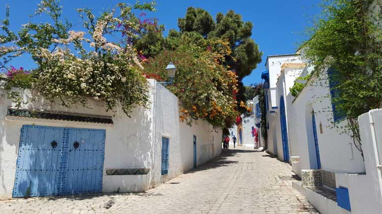 Calle de Sidi Bou Said. © Tu Gran Viaje | Viajar a Sidi Bou Said, Túnez