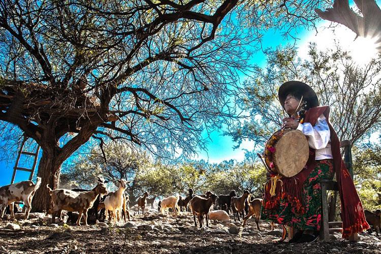 Se presenta Tucumán en Fitur 2017. Tu Gran Viaje