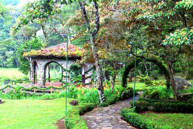 Selva Negra Mountain Resort | Hoteles de Centroamérica para enamorarte en Tu Gran Viaje