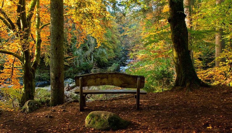 The Hermitage, Escocia. La rotunda naturaleza de Escocia | Revista Tu Gran Viaje editada por TGV Lab