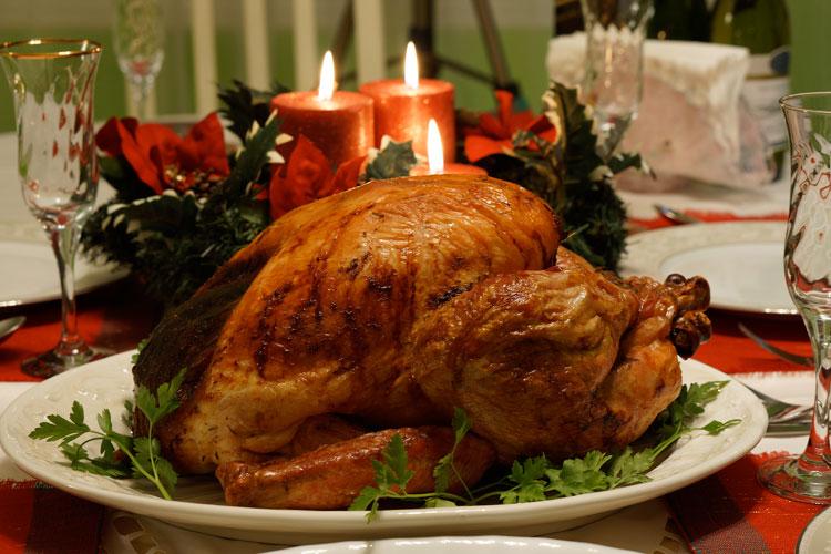 El Día de Acción de Gracias | Revista Tu Gran Viaje