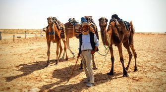 Festival Internacional del Sahara   Revista Tu Gran Viaje
