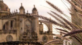 Saeta Flamenca al Paso de la Semana Santa de Jérez   Tu Gran Viaje