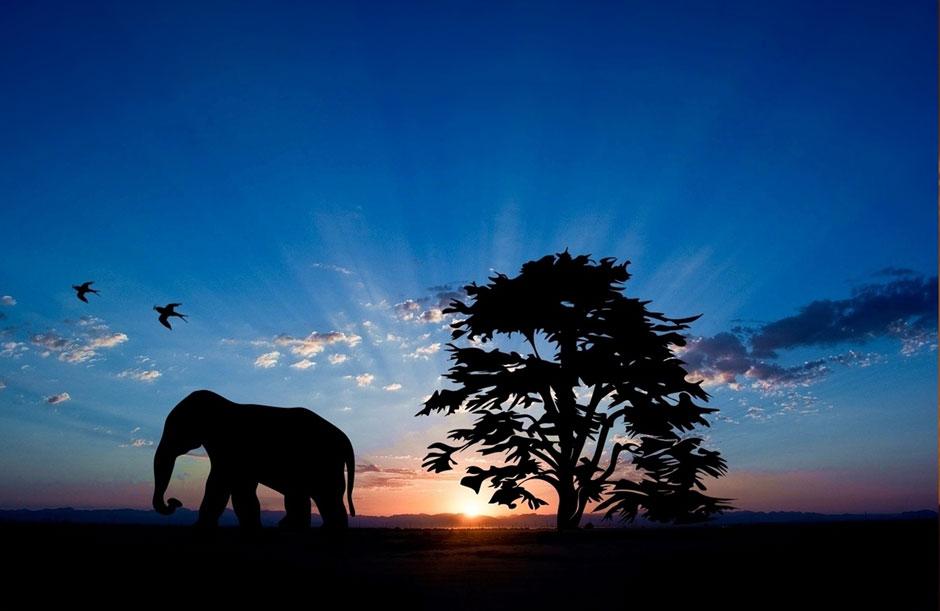Los amaneceres más bellos del mundo   Tu Gran Viaje